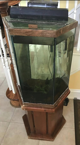 Fish tank stand 29 gallon hex makertrade dallas for Hexagon fish tank with stand