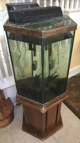 Fish tank stand 29 gallon hex makertrade dallas for 29 gallon fish tank stand